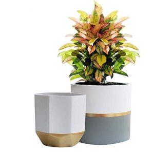 Ceramic Flower Pot Garden Planters