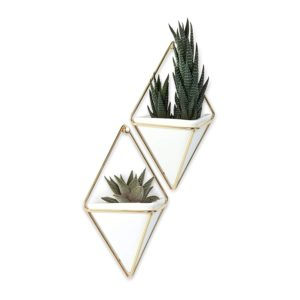 geometrical wall mounted planters