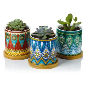 Mandala flower pots