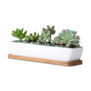 long rectangle White Ceramic Succulent Planter Pots
