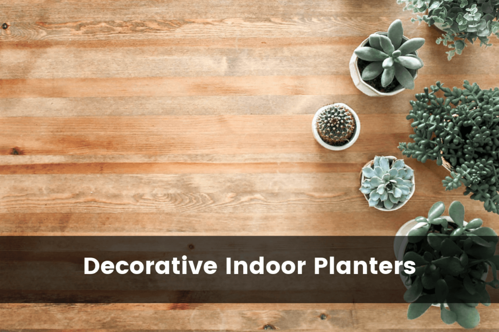 Best Decorative Indoor Flower Pots