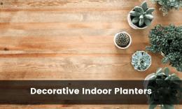 Best Decorative Indoor Flower Pots